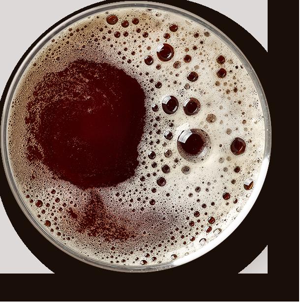 http://asturiasbrewingcompany.com/wp-content/uploads/2017/05/beer_transparent.png